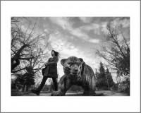 """#1. София, 2016, цикъл """"Тя"""" пигментен отпечатък, 40 x 50 см., рамка цена: 120лв."""