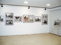 ivelina_berova_hroniki_ot_bulgaria_native_bg_exhibition_museum_ot_photography_ (2)