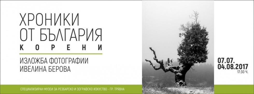 """Изложбата """"Хроники от България: Корени"""" през юли в Трявна"""